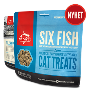 Cat treats 35 g