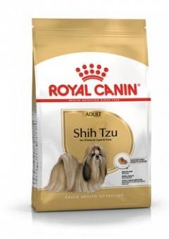 Shih Tzu 1,5kg