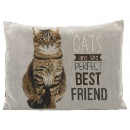 Mysig kudde till katten eller soffan!
