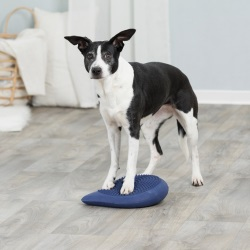 Dog Activity Balansdyna, 28 × 4 × 28 cm, mörkblå
