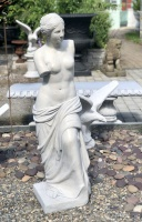 Staty Venus