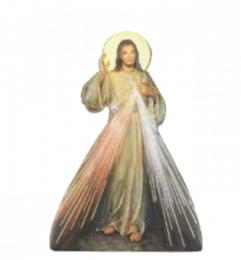 Gudomliga barmhärtigheten - Magnet