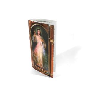 mini-folder Gudomliga Barmhärtighetens r