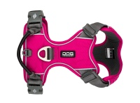 Dog Copenhagen Comfort Walk Pro™ Harness Wild Rose