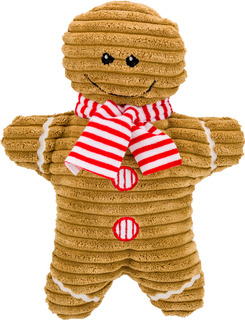 Jul! Groovy Gingerbread Man