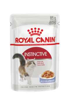 Royal Canin FHN Instinctive Jelly
