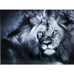 Lion tavla 120x160 cm