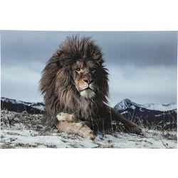 Proud lion glastavla 120x80 cm