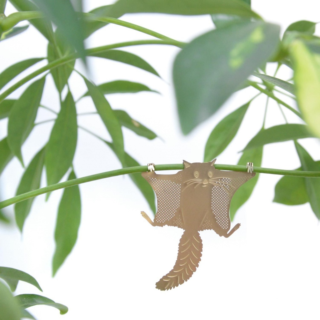 Another Studio Plant Animal Flying Squirrel