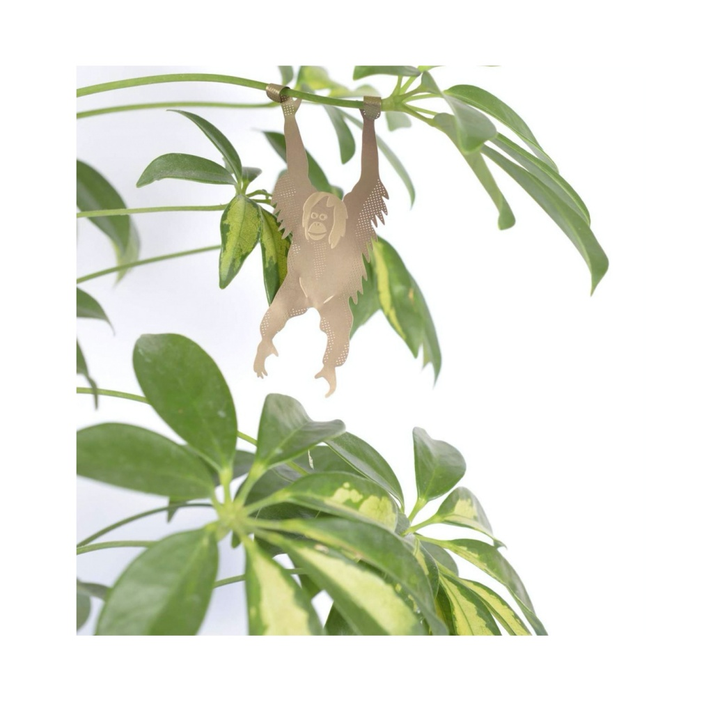 Another Studio Plant Animal Hanging Orangutang
