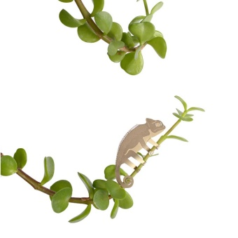 Another Studio Plant Animal Climbing Chameleon