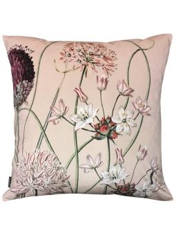 Vanilla Fly Kuddfodral Allium Pink