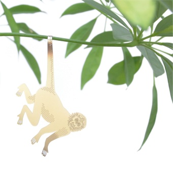 Another Studio Plant Animal Spider Monkey