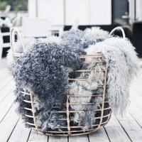 Visby svenskt fårskinn 100x60cm - Natur