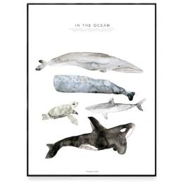 In The Ocean - 50x70 cm