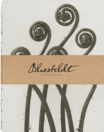 Blossfeldt anteckningsbok, 21x27 cm - Adiantum Pedatum