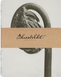 Blossfeldt anteckningsbok, 14,85x19 cm - Osmunda Regalis