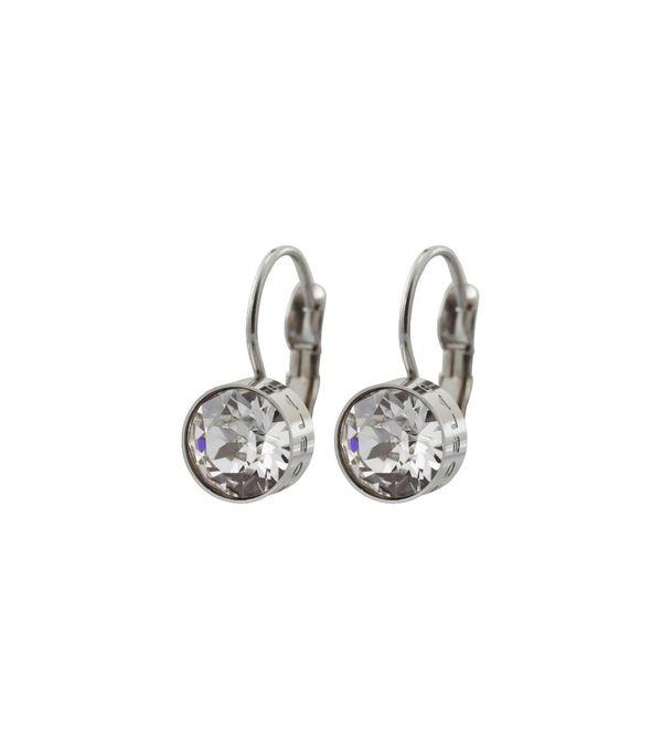 Diana Earrings Clear Crystal - Steel