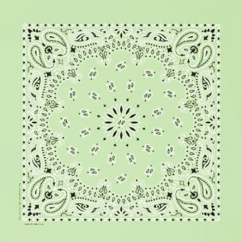 Mint Paisley Bandannas,100% cotton
