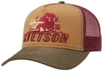Trucker Cap Stronger Bison
