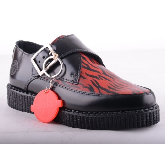 Zebra Pointed Red/Black Creeper