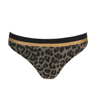 Primadonna Bikinitrosa brief Kiribati Golden Safari