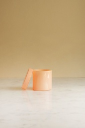 Container Small Nude