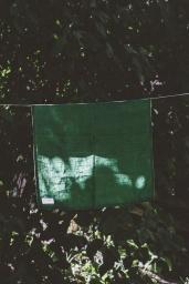 Kökshandduk Linne Forest