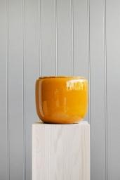 Custa Pot Honey Medium