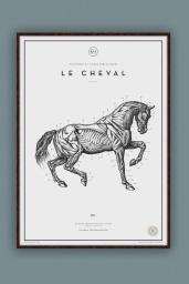 Le Cheval №.3