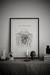 La Méduse №.5