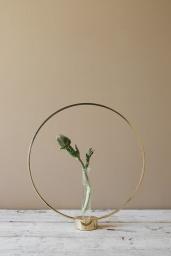 Flora Glasinsats