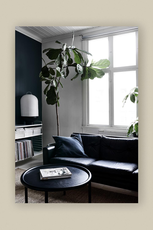 Green Home Book