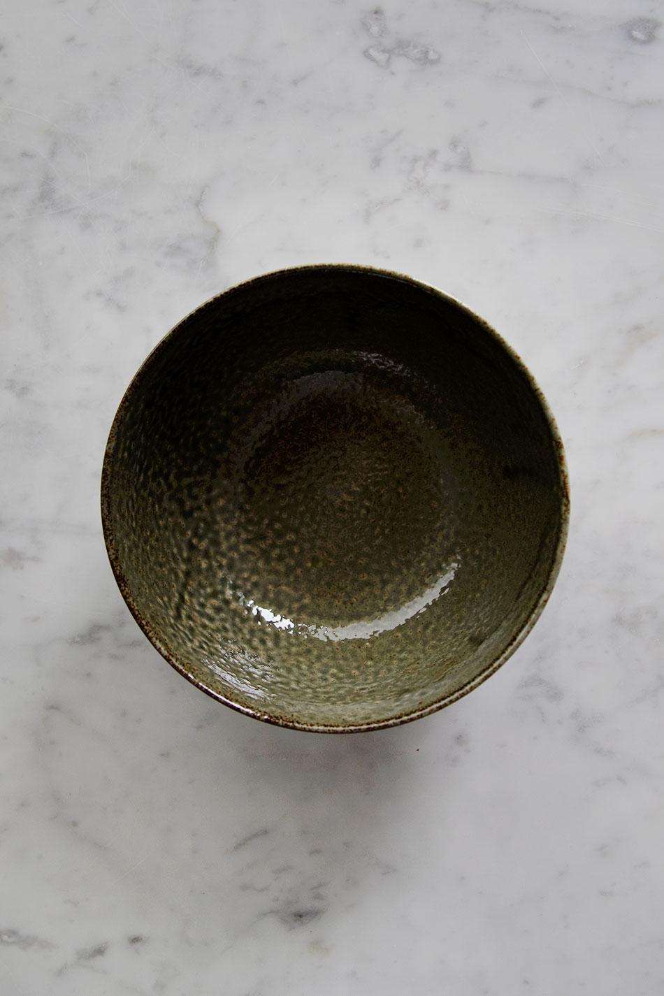 Japanese Noodle Bowl Moss