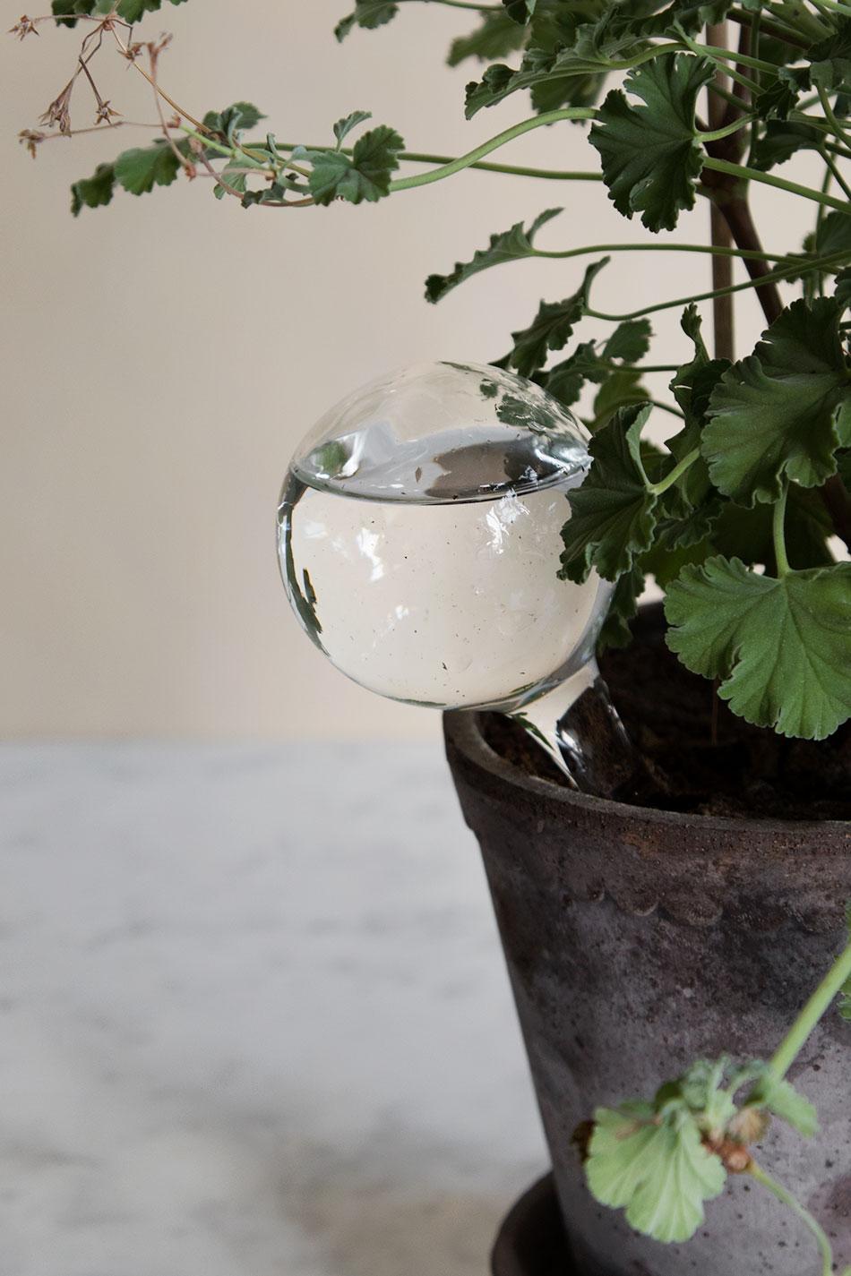 Självbevattnare för krukväxter Small