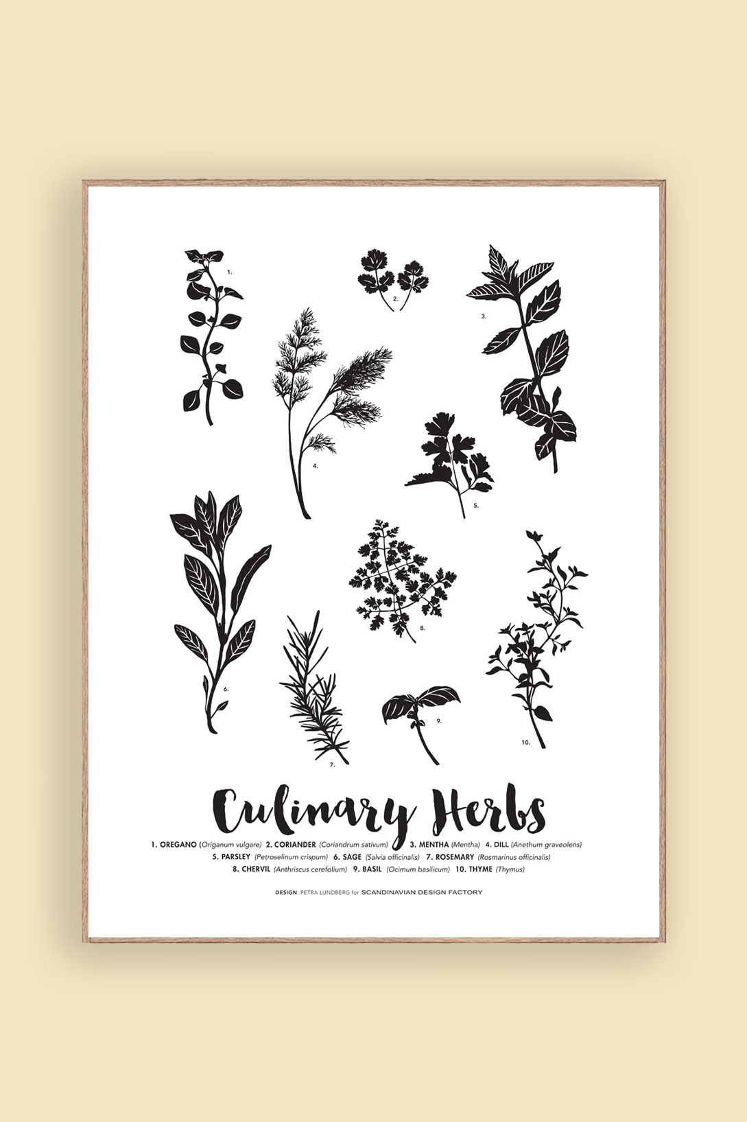 Print Culinary Herbs