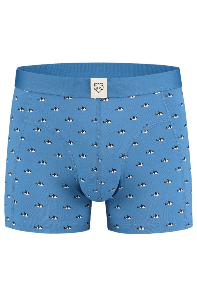 Boxer Brief - Willy