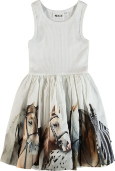 Cassandra Dress Horse Stripe