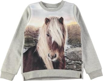Marlee Sweatshirt Icelandic Horse