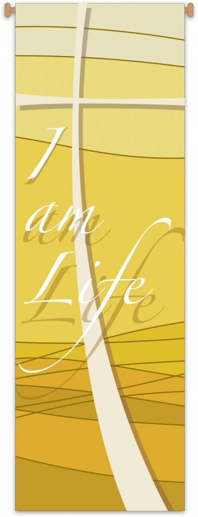 Standar I am Life