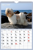 Väggkalender Hundar 29 x 42 cm FSC