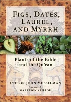 Figs, Dates, Laurel, and Myrrh - Plants of the Bible and the Quran