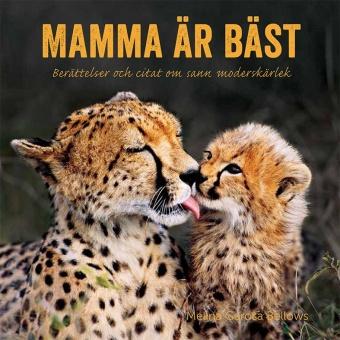 Mamma är bäst: Berättelser och citat som sann moderskärlek