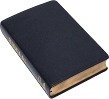 Folkbibeln 2015, konstskinn, blå, 133x200 mm