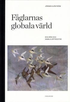 Fåglarnas globala värld: Nya rön och gamla upptäckter