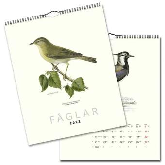 Fåglar 2022 - Design Collection