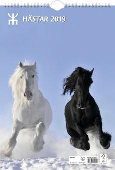 Väggkalender Hästar 29 x 42 cm FSC