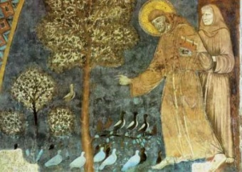 Franciskus & fåglarna