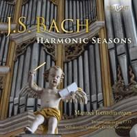 Harmonic Seasons