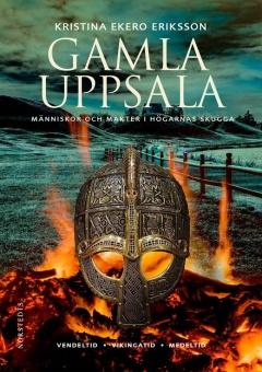 Gamla Uppsala: människor och makter i högarnas skugga